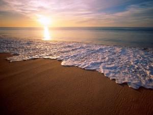 playa psicologia huelva monica